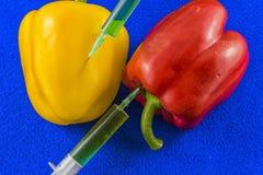 Pimientas de la OGM Imagen de archivo