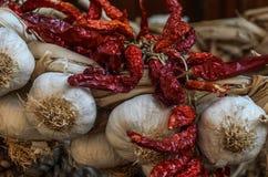 Pimientas del ajo y de chile rojo fotos de archivo