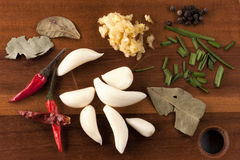 Pimientas del ajo, y especias para cocinar Fotos de archivo libres de regalías