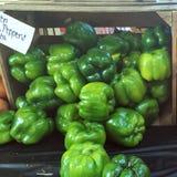 Pimientas del mercado de los granjeros foto de archivo libre de regalías