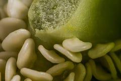 Pimientas dulces coloridas brillantes aisladas en blanco Fotografía de archivo