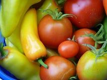 Pimientas dulces y tomates Imagen de archivo