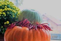 Pimientas, flores del otoño y calabazas por la ventana Foto de archivo