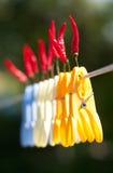Pimientas muy calientes Fotos de archivo libres de regalías