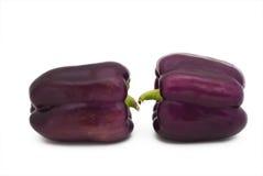 Pimientas púrpuras Imágenes de archivo libres de regalías