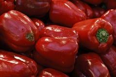 Pimientas rojas Imágenes de archivo libres de regalías