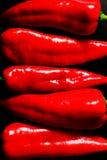 Pimientas rojas Fotografía de archivo
