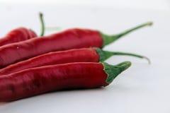 Pimientas rojas Foto de archivo