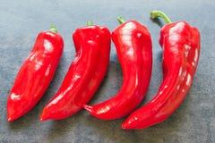 Pimientas rojas brillantes frescas Imagenes de archivo