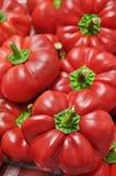 Pimientas rojas dulces Fotografía de archivo libre de regalías