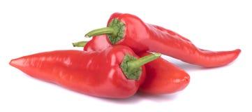 Pimientas rojas en primer Imagen de archivo libre de regalías