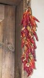 Pimientas rojas secadas ejecución Fotos de archivo libres de regalías