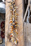 Pimientas rojas secadas ejecución Imagen de archivo