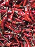Pimientas rojas secadas o chillis rojos Foto de archivo libre de regalías