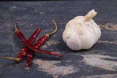 Pimientas rojas secadas y un jefe del ajo en pizarra gris Imagen de archivo libre de regalías
