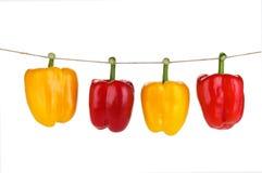 Pimientas rojas y amarillas Fotografía de archivo
