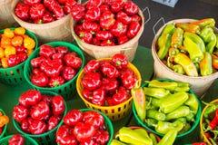 Pimientas rojas y pimientas de Carmer Imagen de archivo