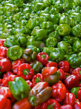 Pimientas rojas y verdes Foto de archivo libre de regalías
