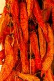 Pimientas secadas otoño Imagen de archivo libre de regalías