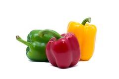 Pimientas tricolores Foto de archivo libre de regalías