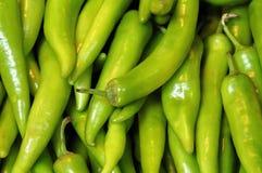Pimientas verdes Imágenes de archivo libres de regalías