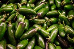 Pimientas verdes de Jalopeno Imagen de archivo libre de regalías