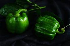 Pimientas verdes de las verduras dulces frescas en fondo oscuro Foto de archivo libre de regalías