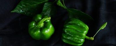 Pimientas verdes de las verduras dulces frescas en fondo oscuro Fotos de archivo