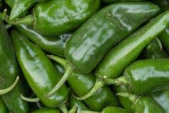 Pimientas verdes dulces Imágenes de archivo libres de regalías