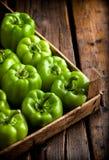 Pimientas verdes en caja de madera rústica Imágenes de archivo libres de regalías
