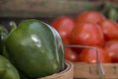 Pimientas verdes y tomates Imagenes de archivo