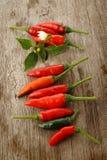 Pimientas y hojas de chile rojo Imágenes de archivo libres de regalías