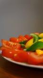 Pimientas y tomates Imagen de archivo libre de regalías