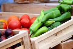 Pimientas y tomates picantes Fotografía de archivo libre de regalías
