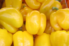 Pimiento amarillo imagen de archivo libre de regalías