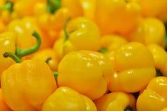 Pimiento fresco amarillo de la pimienta en la parada del mercado Foto de archivo