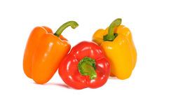 Pimiento tricolor. Pimientos,orange red and yellow colors on full white background Royalty Free Stock Images