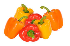 Pimientos color on white Stock Image