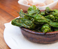 Pimientos de padron Royalty Free Stock Photo