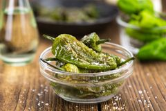 Fresh made Pimientos de Padron on a rustic background Stock Image