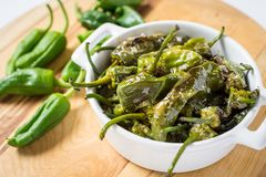 Free Pimientos De Padron. Padron Green Peppers In White Bowl. Stock Images - 116794714