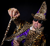 Pimp costume royalty free stock images