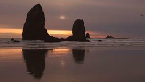 Pináculos de la puesta del sol, costa de Oregon metrajes