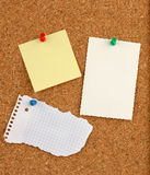 Pin board. Of cork with empty notes Royalty Free Stock Photo