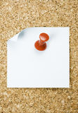Pin board with papers Royalty Free Stock Photos