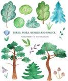 Pin d'aquarelle, sapin, arbres, buissons, pierres, fleurs, champignons illustration libre de droits