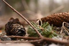 pin d'isolement par cône proche de fond vers le haut de blanc photos libres de droits