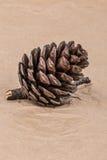 pin d'isolement par cône proche de fond vers le haut de blanc Photographie stock libre de droits