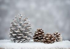 pin d'isolement par cône proche de fond vers le haut de blanc Images stock