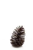 pin d'isolement par cône proche de fond vers le haut de blanc Images libres de droits